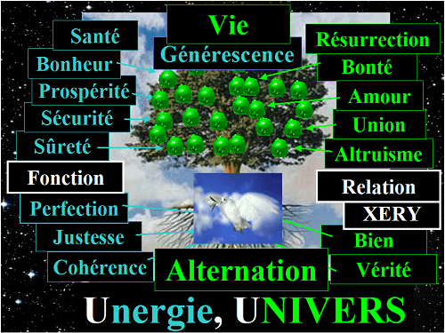 L'Alternation, le contraire de la Négation; l'Alternation est la nature POSITIVE, NORMALE, le fonctionnement normal de l'Univers;  		l'Alternation est synonyme d'Univers TOTAL, d'Existence, d'Unergie (Energie Positive), de Générescence, de Vie