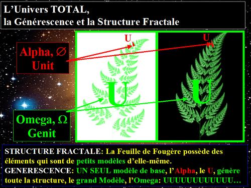 structure éponge univers