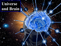 Universe and Brain