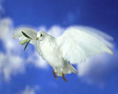 La joie de l'Évangile/Citation/93<>97 Ubirdt-saint-esprit